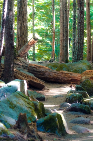 Lindeman Hike